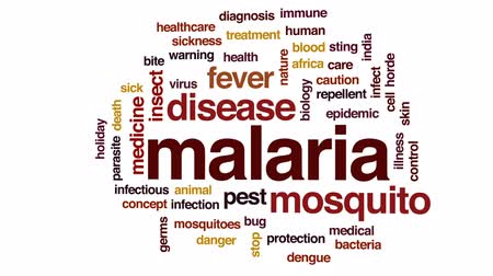 owady : Malaria animated word cloud, text design animation. Wideo