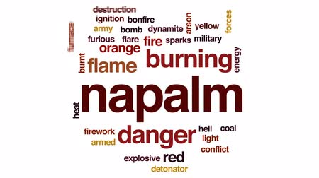hamu : Napalm animated word cloud, text design animation. Stock mozgókép