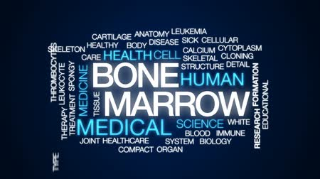 cálcio : Bone marrow animated word cloud, text design animation.
