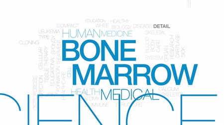 compacto : Bone marrow animated word cloud, text design animation. Kinetic typography.