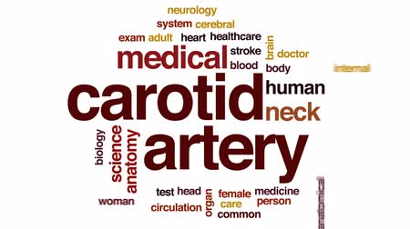 циркуляция : Carotid artery animated word cloud, text design animation.