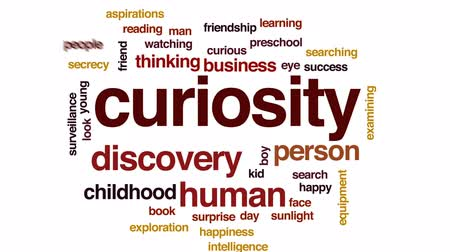 examining : Curiosity animated word cloud, text design animation.