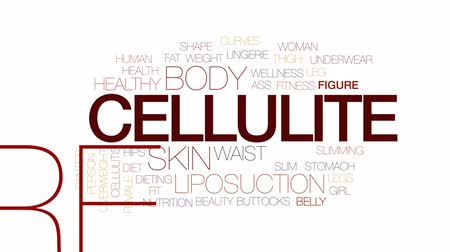 kalhotky : Cellulite animated word cloud, text design animation. Kinetic typography.