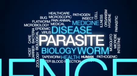 паразитный : Parasite animated word cloud, text design animation.
