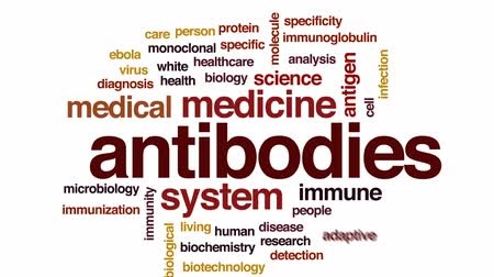 specificity : Antibodies animated word cloud, text design animation.