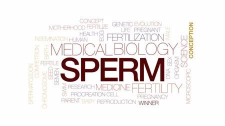 Sperm animated word cloud, text design animation. Kinetic typography.