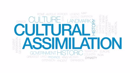 integração : Cultural assimilation animated word cloud, text design animation. Kinetic typography. Stock Footage
