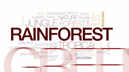 yemyeşil bitki örtüsü : Rainforest animated word cloud, text design animation. Kinetic typography.