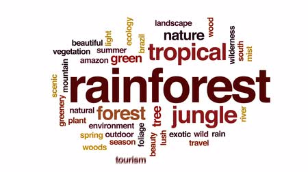 brasil : Rainforest animated word cloud, text design animation.