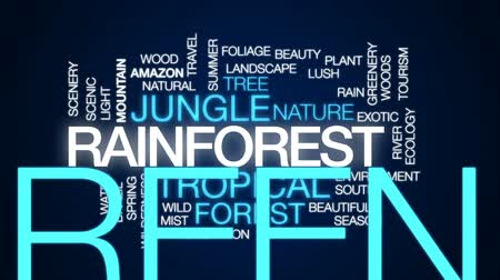 yemyeşil bitki örtüsü : Rainforest animated word cloud, text design animation.