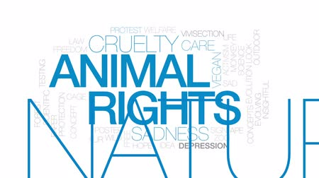 refah : Animal rights animated word cloud, text design animation. Kinetic typography. Stok Video