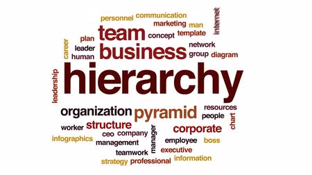 hierarchy : Hierarchy animated word cloud, text design animation. Stock Footage