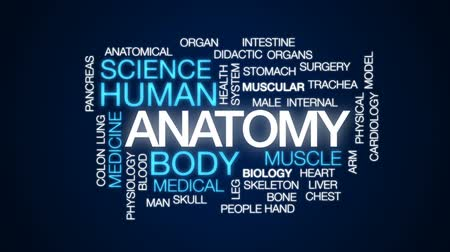 csontváz : Anatomy animated word cloud, text design animation. Stock mozgókép