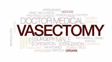 vasectomy : Vasectomy animated word cloud, text design animation.Kinetic typography.