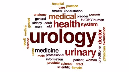 prostata : Urology animated word cloud, text design animation.