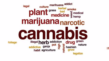 addiktív : Cannabis animated word cloud, text design animation.