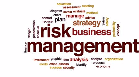 assess : Risk management animated word cloud, text design animation.