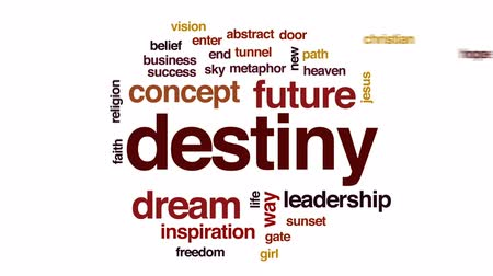 вводить : Destiny animated word cloud, text design animation. Стоковые видеозаписи