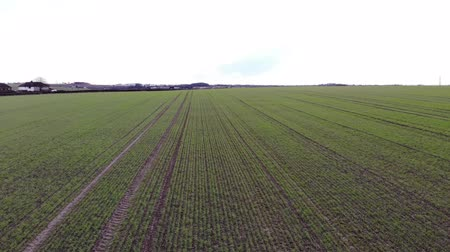 Aerial drone footage flying across a field, on a partly cloudy day Wideo