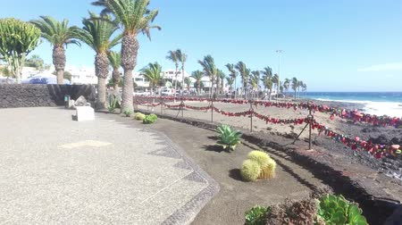 Love Locks and Palm trees blowing on a beach on a windy day close to the sand and coastal area, taken in Lanzarote one of the Canary islands off the coast of West Africa, Spain Wideo