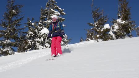 lesiklás : The young woman on a skis wearing in a pink pants and the blue jacket is riding near the camera in a bright sunny winter day. Shooted in Carpathian mountains, Ukraine.