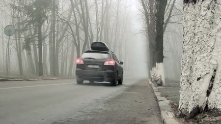 daleko : The black crossover car with the touring roof box is going the alley road away into the morning fog.
