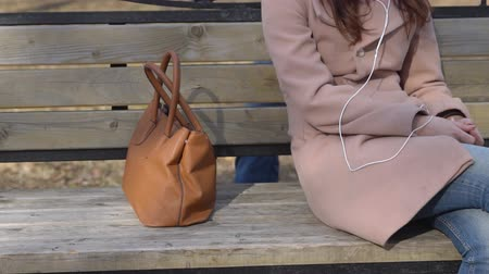 soymak : slow motion of robber carries the womans bag off the bench in the park. Stok Video