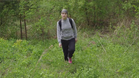 podróżnik : woman with a backpack rises a hill in the forest. Wideo