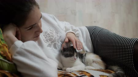 ковер : Woman Stroking a at Lying on the Couch. The cat lies on the upholstered furniture in the house and playing with the girl.