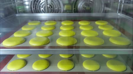 konfekció : Macaroons is baking in the oven on stencil silicone mat on baking sheet. Timelapse video.