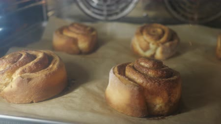 bread pan : Cinnamon rolls are baking in the oven. Close-up view. Baking and industrial food production.