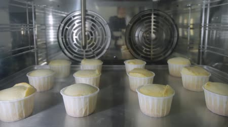 muffin : Muffins in paper cups is baking in oven on metal baking sheet. View through the glass. Timelapse video.