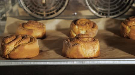 konfekció : Cinnamon rolls are baking in the oven. Close-up view. Baking and industrial food production.