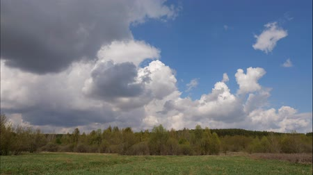 esőerdő : Time lapse of white clouds forming above a green forest and on a blue sky, on a warm sunny summer day. 4k Stock mozgókép