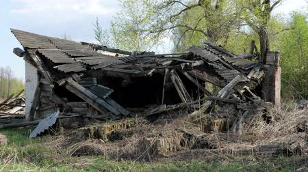 konak : destroyed old brick home in forest, close-up