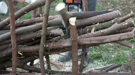 пиломатериалы : man logger sawing trees with chainsaw in the forest, close-up