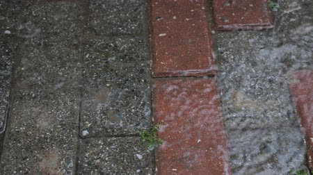 paving : Autumn rain water drops falling into puddle on asphalt, close-up