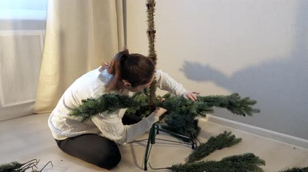 インサート : lady with dark ponytail in white sweater assembles artificial christmas tree inserting branches into trunk close view