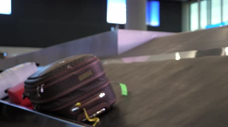 concourse : suitcase is moving on luggage conveyor belt in the airport terminal, closeup view. Stock Footage