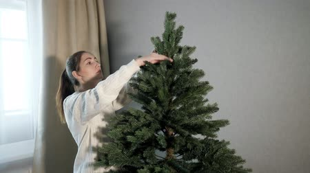 süslemek : happy young woman in sweater straightens artificial green christmas tree branches in white spacious room close view Stok Video