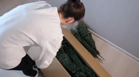 bum : lady with dark hair in white sweater gets artificial christmas tree branches out of box close backside view