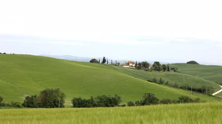 İtalyan : Typical landscape of Tuscany with hills and the grass waving on a wind