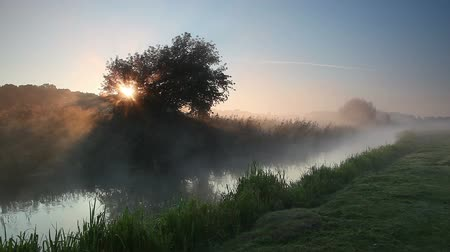 Mist rises over the water in the morning sun. Dramatic and picturesque scene. Wonderful natural background. Location place Ukraine, Europe. Explore the worlds beauty. Shooting in HD 1080 video. Stock Footage