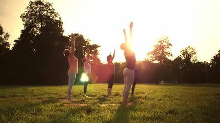 instrutor : Mixed age group of people practicing yoga outside in the park while sunset