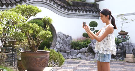 banyan : Woman taking photo on potted plant in chinese garden Stock Footage