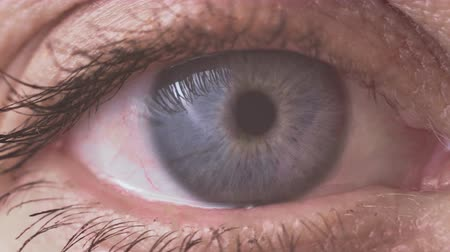 Macro video of the pupil of the female eye of a blond woman at the age of 50 Стоковые видеозаписи