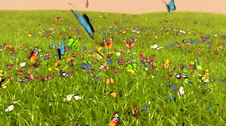tridimensional : Spring Butterfly, 3D animation