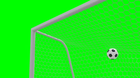 trest : shot on goal, slow motion 3d animation on green background