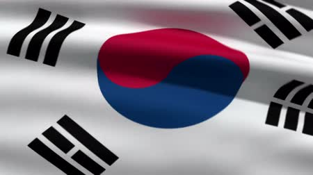 korejština : South Korean flag, 3d animation. perfect seamless loop Dostupné videozáznamy