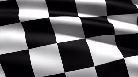 гонка : race flag, 3d animation, perfect seamless loop Стоковые видеозаписи